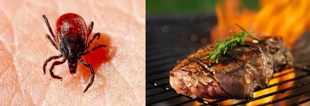 Το τσιμπούρι μπορεί να προκαλέσει αλλεργία στο κρέας.